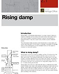 rising-damp-thumb