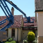 Repairing roof and bird proofing all the eaves and chimneys.