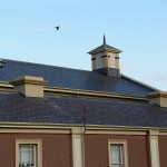 Slate and Iron Roofing