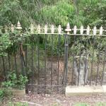 Fencing Restoration – before